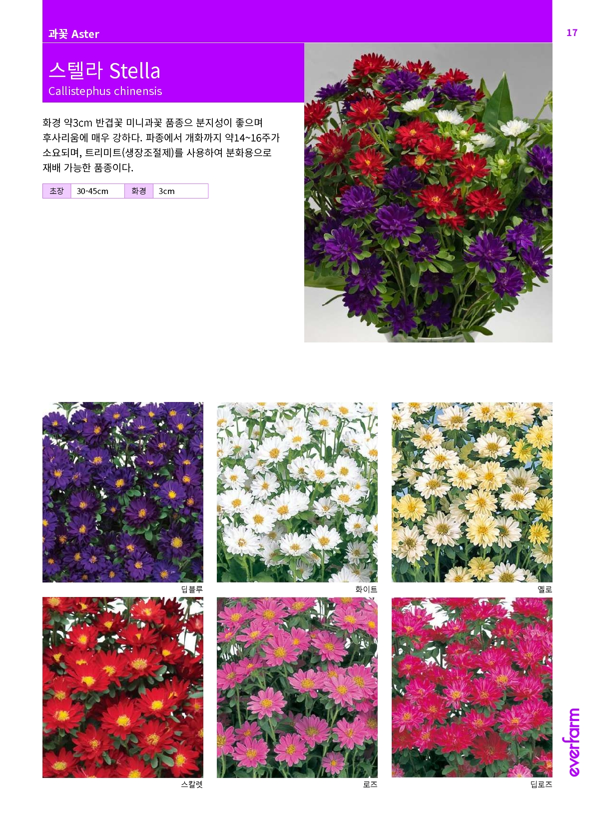 2020ef-collection.pdf_19