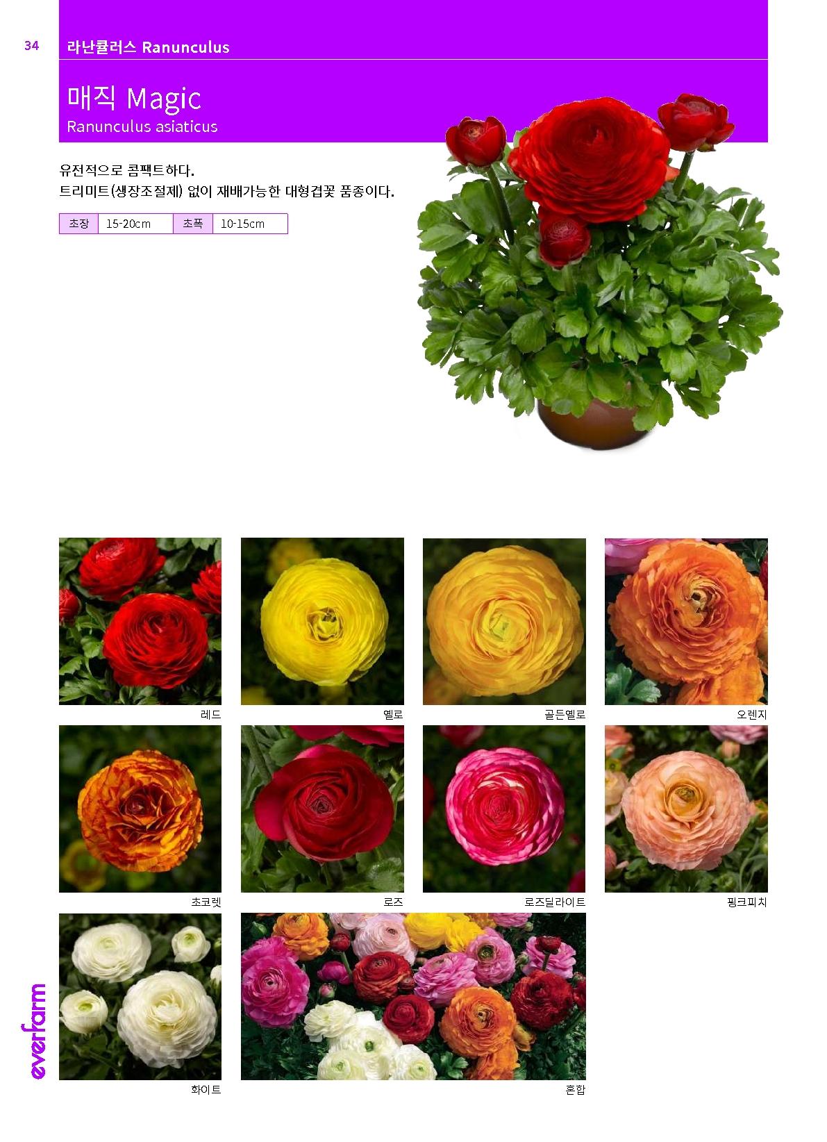 2020ef-collection.pdf_36